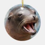 Ornamentos del león marino de California Adorno De Navidad