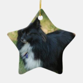 Ornamentos del perro de Pomeranian Ornamento De Navidad