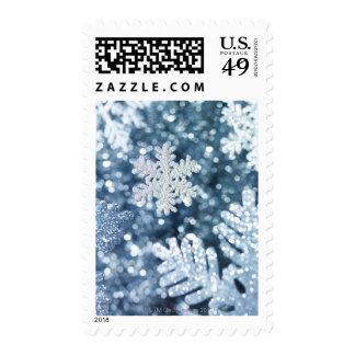 Ornamentos escarchados del copo de nieve del sellos