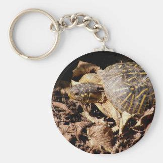 Ornate Box Turtle Key Chains