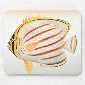 Ornate Butterflyfish Mousepads