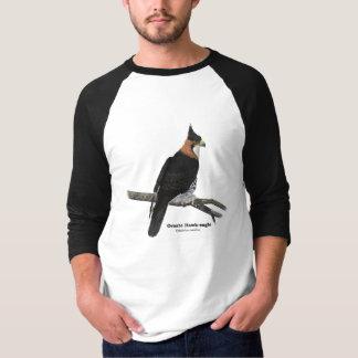 Ornate Hawk-Eagle Jersey T-Shirt