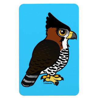 Ornate Hawk-Eagle Magnet