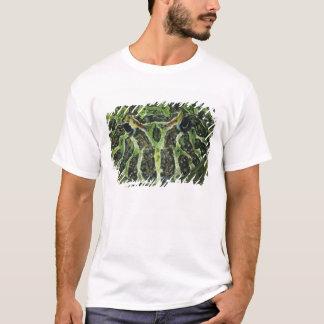 Ornate Horned Frog, (Ceratophrys ornata), South T-Shirt