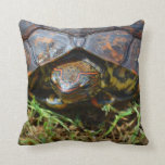 Ornate Turtle top view saturated.jpg Pillow