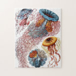 """Ornate Vintage Jellyfish Jigsaw Puzzle<br><div class=""""desc"""">Beautiful puzzle with vintage illustration by Ernst Haeckel of various Jellyfish species.</div>"""
