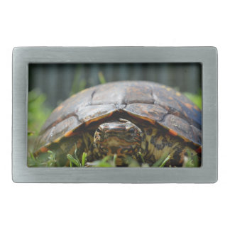 Ornate wood turtle at his level in grass rectangular belt buckle