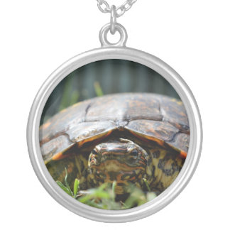 Ornate wood turtle at his level in grass round pendant necklace