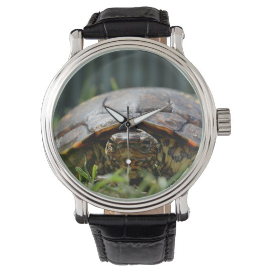 Ornate wood turtle at his level in grass wristwatch