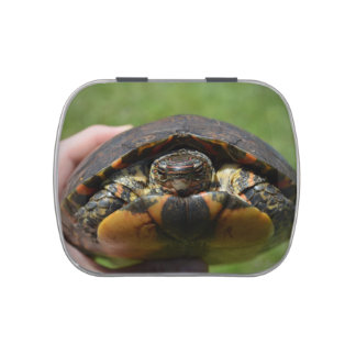 Ornate wood turtle in hand candy tins