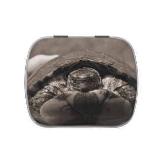 Ornate wood turtle in hand centered sepia candy tins