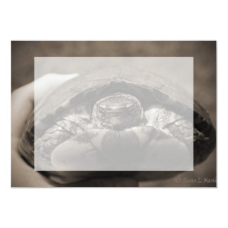 Ornate wood turtle in hand centered sepia card