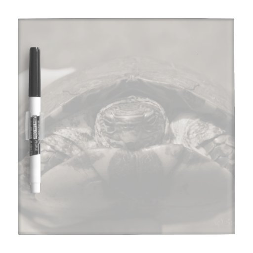 Ornate wood turtle in hand centered sepia Dry-Erase board