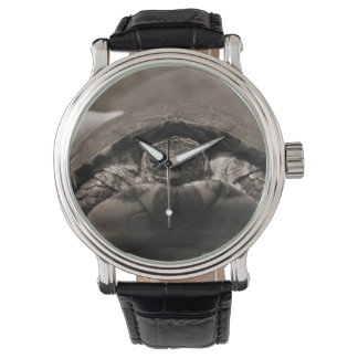 Ornate wood turtle in hand centered sepia watches