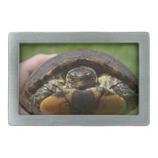 Ornate wood turtle in hand rectangular belt buckle
