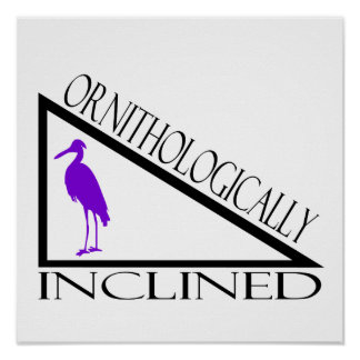 Ornithologically Inclined Poster