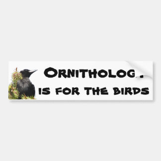 Ornithology is For the Birds Crow on Tree Bumper Sticker