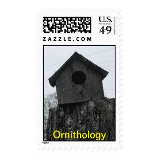 Ornithology postage stamp