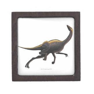 Ornithomimus Caja De Recuerdo De Calidad