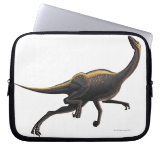 Ornithomimus Fundas Portátiles