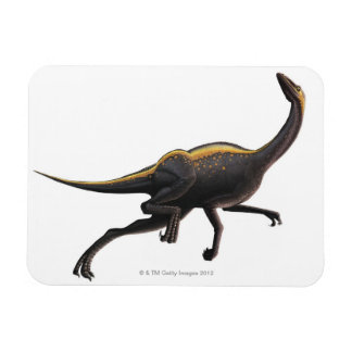 Ornithomimus Imanes