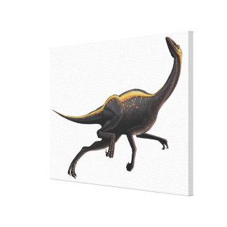 Ornithomimus Lona Estirada Galerías