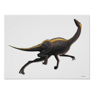 Ornithomimus Posters