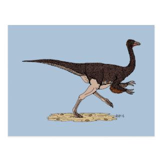 Ornithomimus Postcard