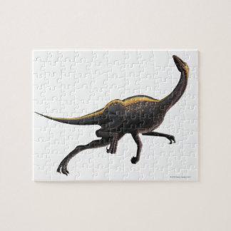 Ornithomimus Puzzles