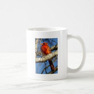Ornitología cardinal taza de café