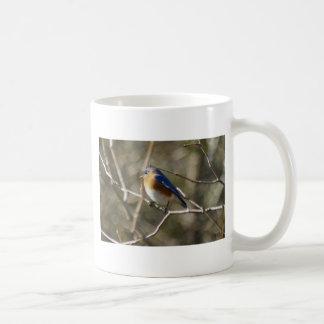 Ornitología del Bluebird Taza
