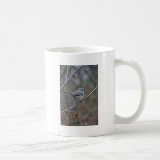 Ornitología del Mockingbird Tazas De Café