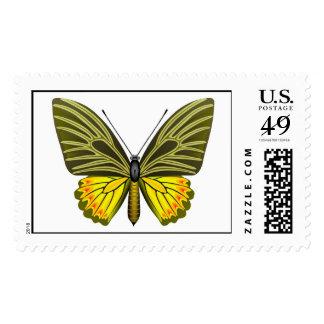 Ornitoptera 2 sellos