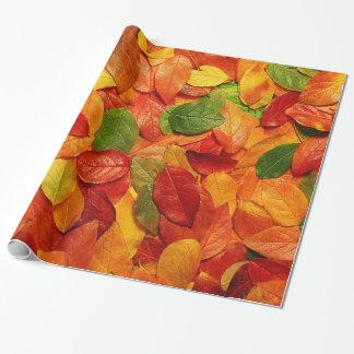 Oro anaranjado rojo y hojas verdes del óvalo de la papel de regalo