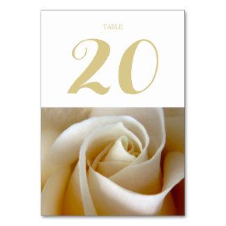 Oro color de rosa poner crema de la foto del boda