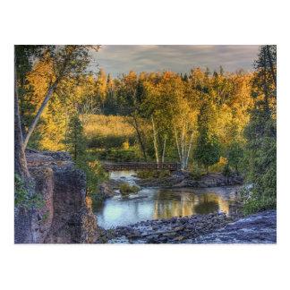 Oro del otoño tarjetas postales