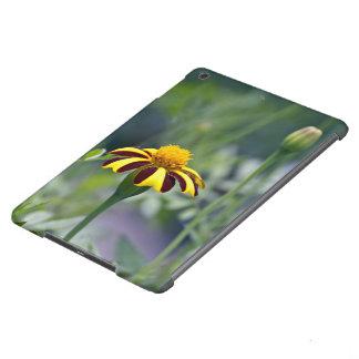 Oro natural funda para iPad air