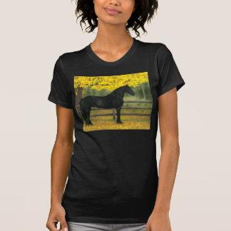 Oro negro - camisa