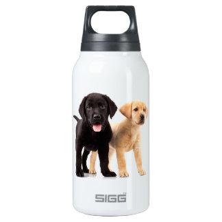 Oro y perritos negros de Labrador