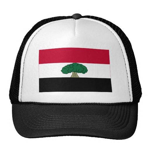 Oromia Flag Mesh Hat