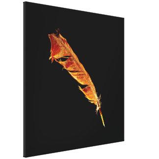 Oros en la pluma del cuervo negro para los Cuervo- Lona Envuelta Para Galerias
