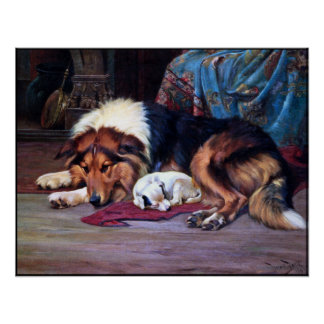 Orphan Dog Rescued by a Collie - Vintage Art Print