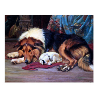 Orphan Dog with Collie Vintage Art Postcard