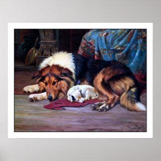 Orphan Dog with Collie - Vintage Fine Art Print