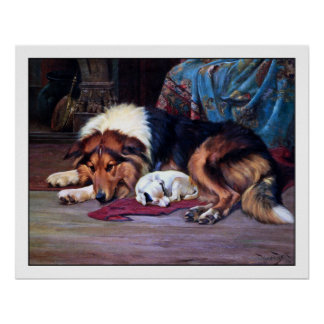 Orphan Puppy and a Collie - by Wright Barker Poster