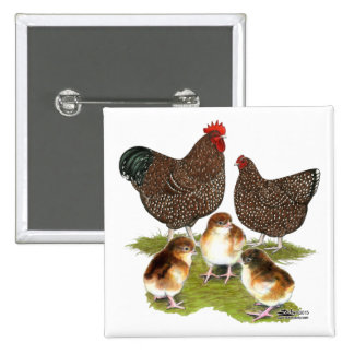 Orpington Jubilee Chicken Family 2 Inch Square Button