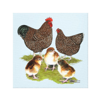 Orpington Jubilee Chicken Family Canvas Print