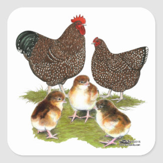 Orpington Jubilee Chicken Family Square Sticker