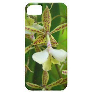 Orquid amarillo iPhone 5 fundas
