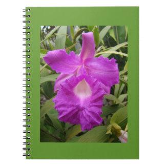 Orquid púrpura libro de apuntes